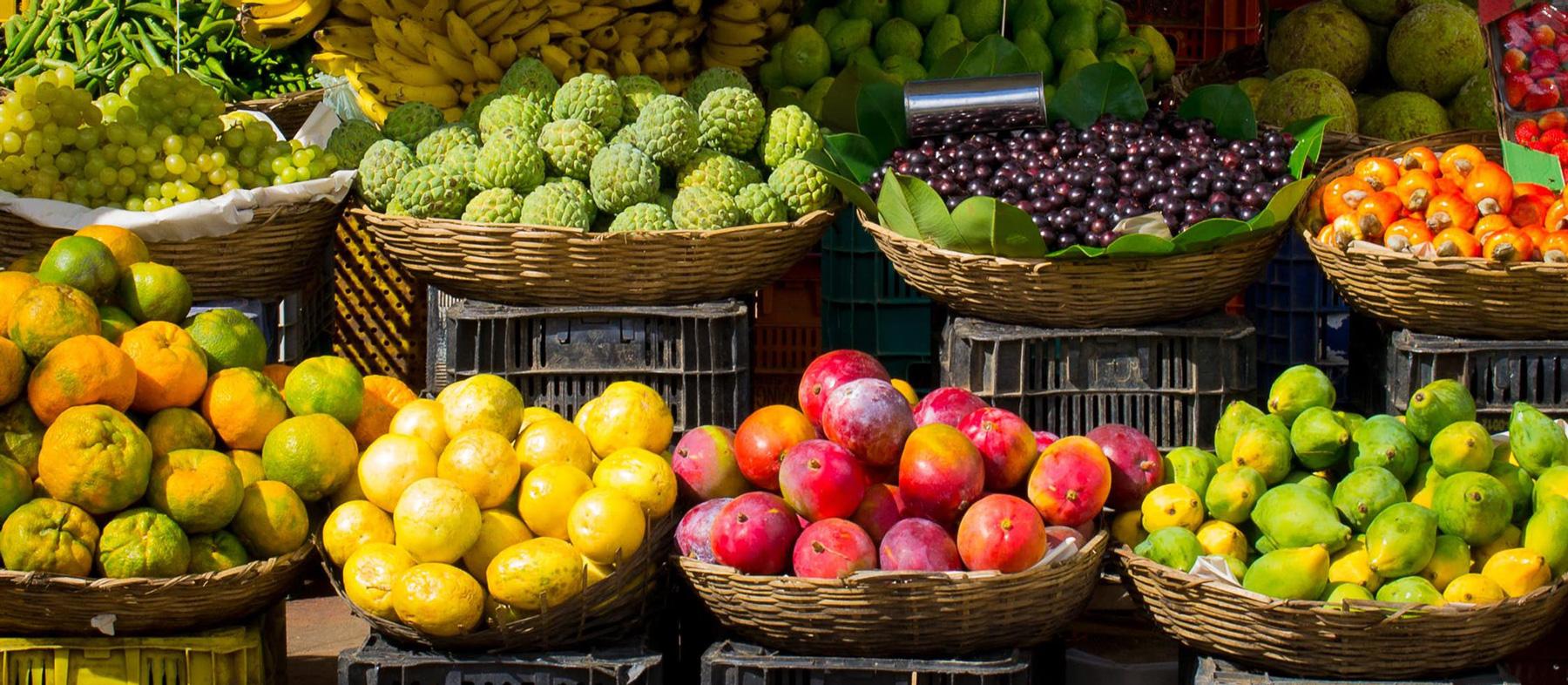 éclairage LED blanc lumière du jour fruits et légumes